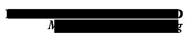 IWMM Logo