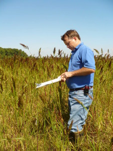 Vegetation Survey