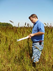 Vegetation Survey