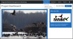 IWMM Database Login Screen